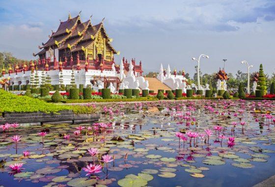 Chiang Mai Garden