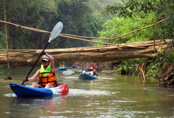 Jungle River Kayaking Trip